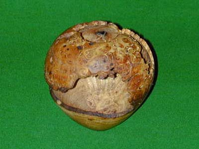 Burr Elm Bowl